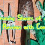 5 Best Pruning Shears