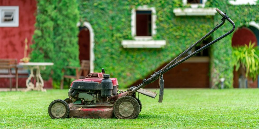 10 Best Cheap Lawn Mowers in 2021