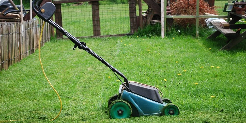 10 Best Lawn Mowers for Small Yards in 2021