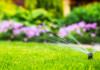 10 Best Lawn Sprinklers in 2021