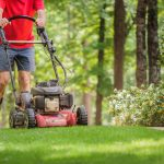 10 Best Walk Behind Lawn Mowers