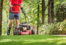 10 Best Walk Behind Lawn Mowers in 2021