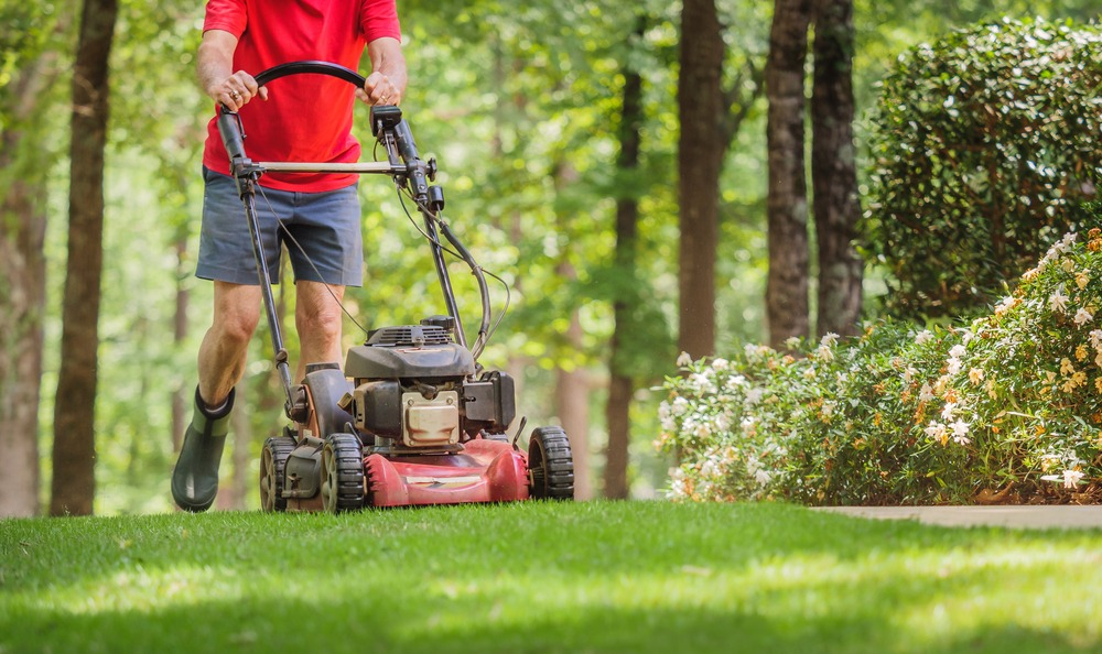 10 Best Walk Behind Lawn Mowers in 2021