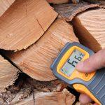 10 Best Wood Moisture Meters