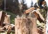 10 Best Axes for Splitting Wood in 2021