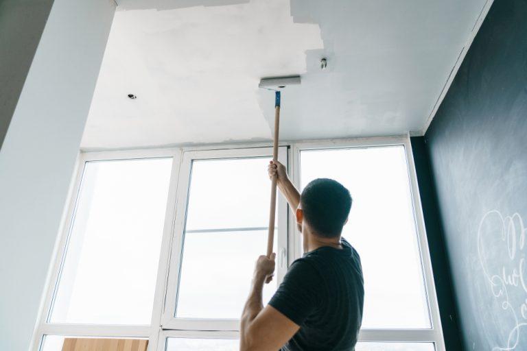 best ceiling paint