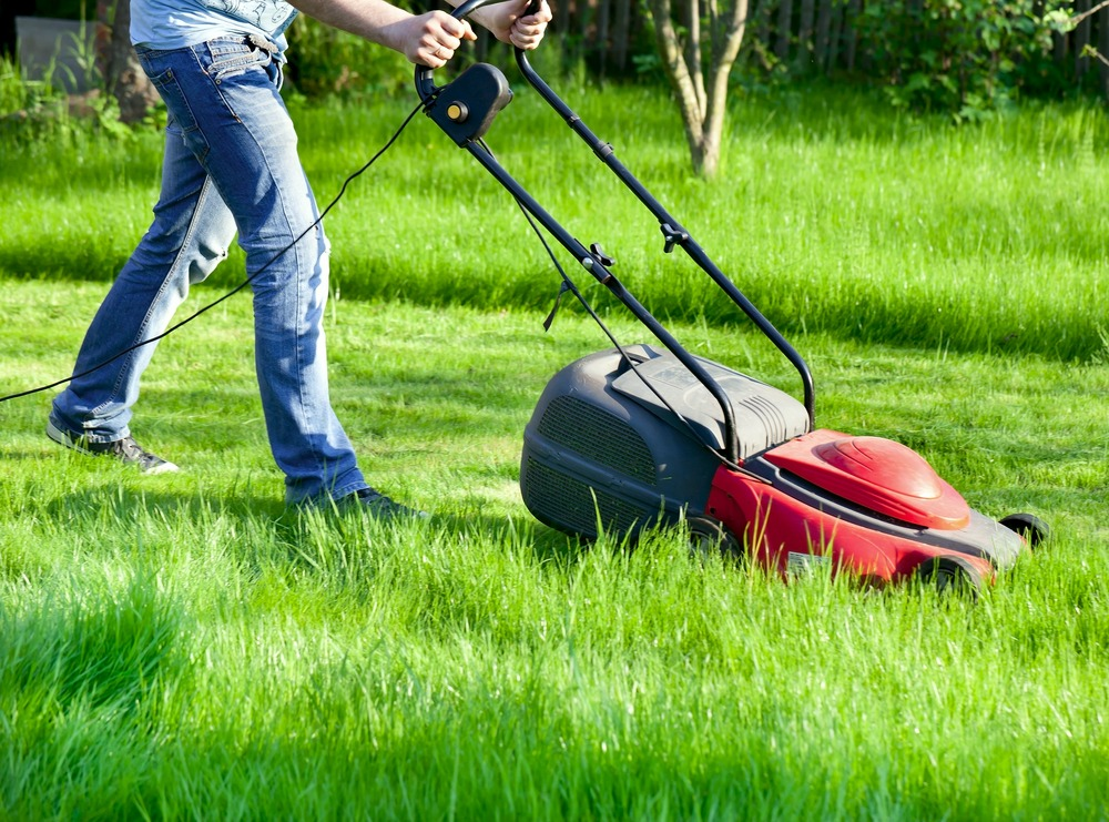 10 Best Electric Lawn Mowers in 2021