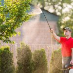 10 Best Garden Sprayers
