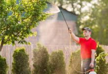 10 Best Garden Sprayers in 2021