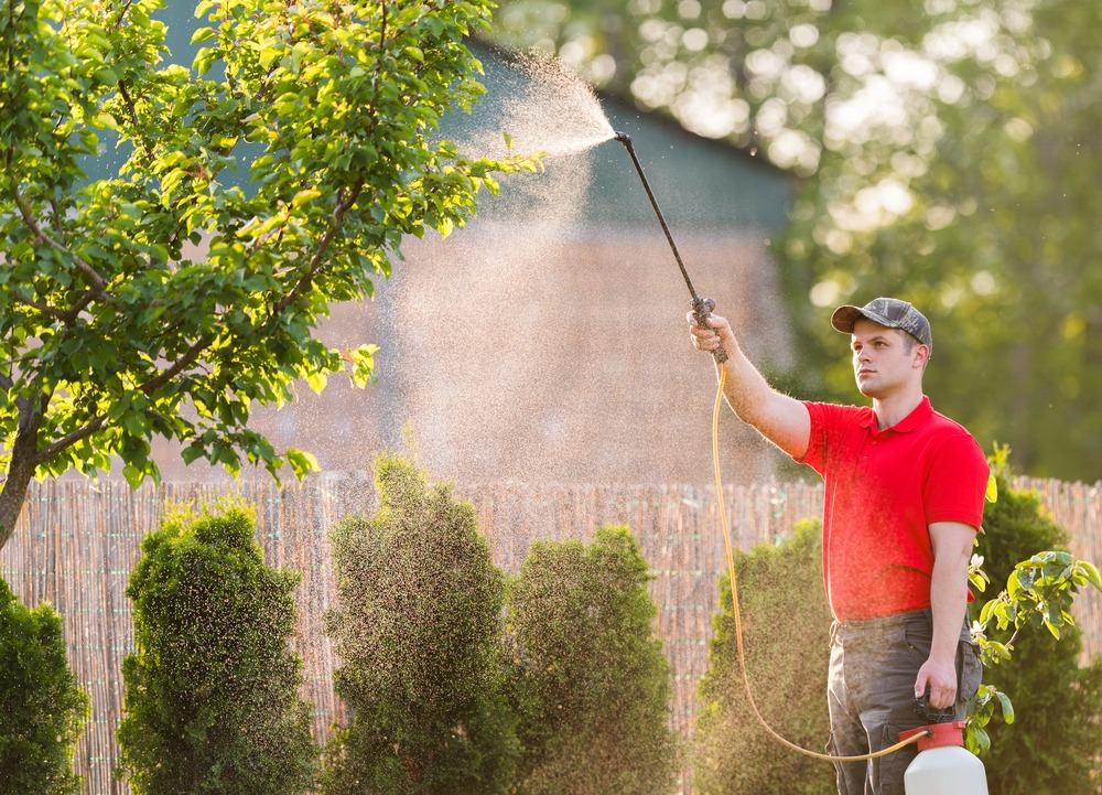 10 Best Garden Sprayers in 2021