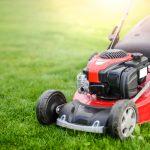10 Best Lawn Mowers