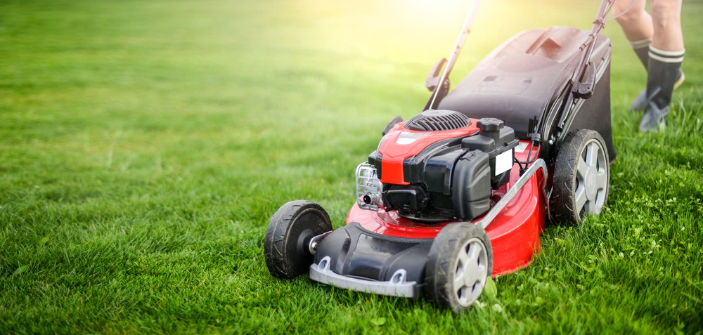 10 Best Lawn Mowers in 2021