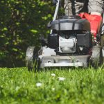 10 Best Push Mowers
