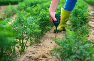 best soil moisture meter