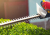 10 Best Hedge Trimmers in 2021