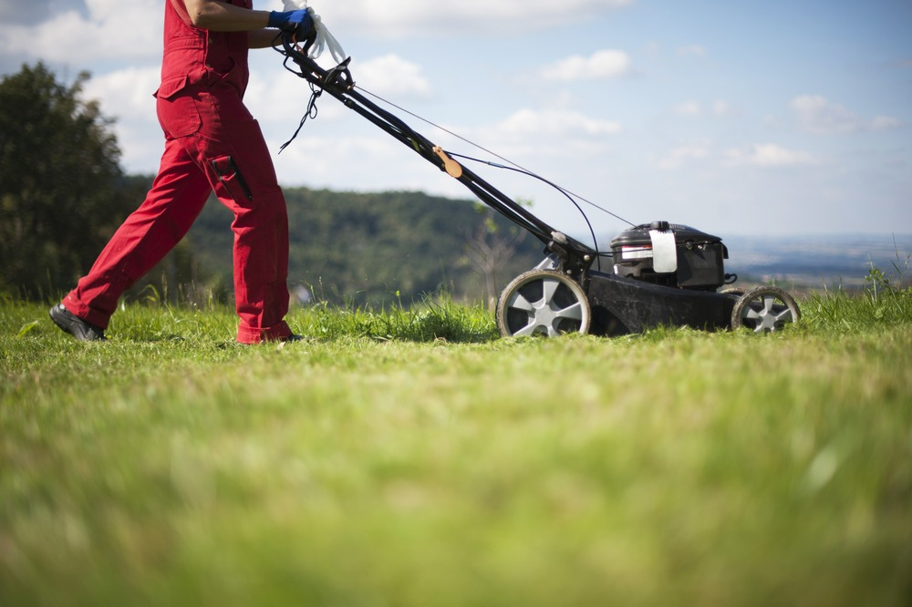 10 Best Self-Propelled Lawn Mowers in 2021